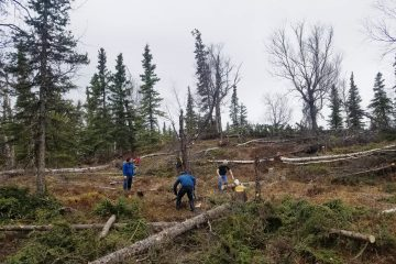 Clearing the AK House Project lot